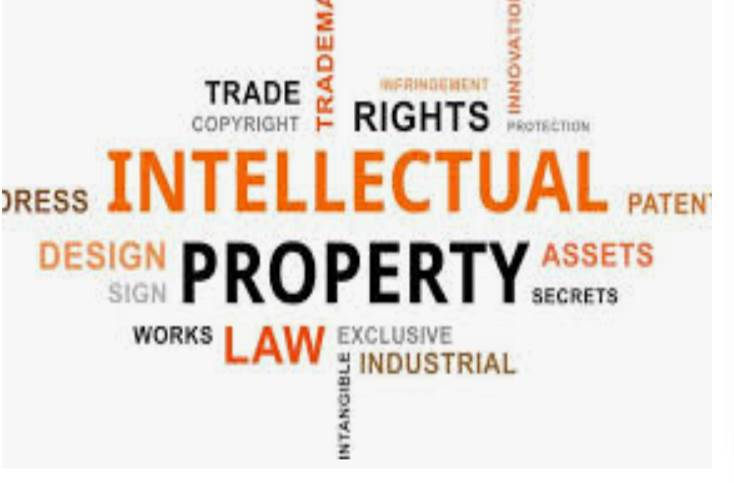 Intellectual Property – Copyright Infringement                                               29 successful years Investigating Piracy Worldwide